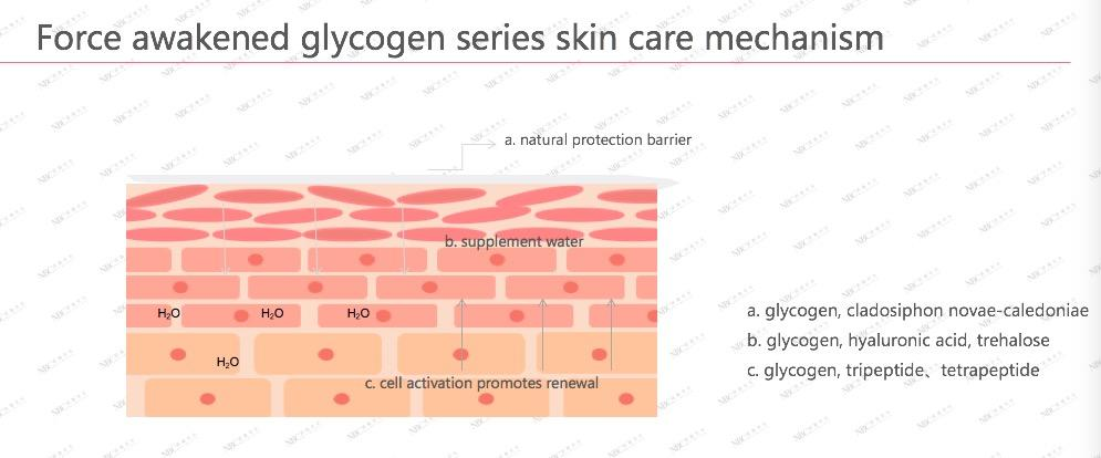 online skin products serum manufacturer for skincare-3